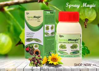 On-On-Maha-Bhringraj-Herbal-Hair